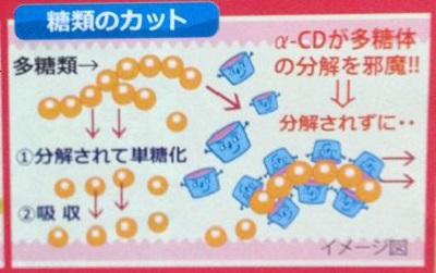 糖類のカット.jpg