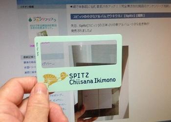 spitz 001.JPG