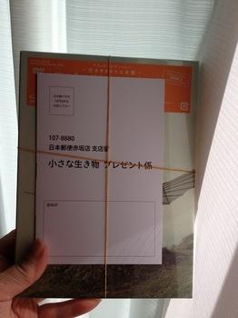 0914 010.JPG